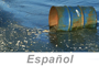 Stormwater Pollution Protection (Spanish), PS4 eLesson